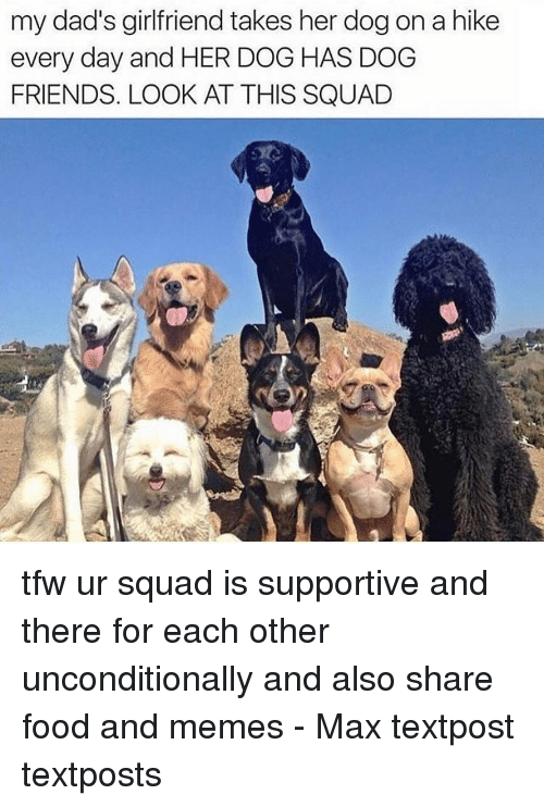 Food, Friends, and Memes: my dad's girlfriend takes her dog on a hike  every day and HER DOG HAS DOG  FRIENDS. LOOK AT THIS SQUAD tfw ur squad is supportive and there for each other unconditionally and also share food and memes - Max textpost textposts