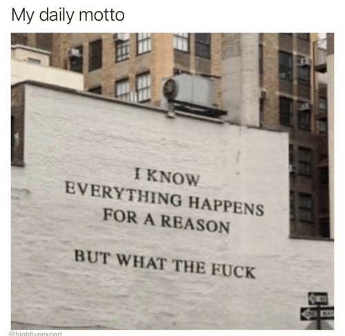 motto: My daily motto  I KNOW  EVERYTHING HAPPENS  FOR A REASON  BUT WHAT THE FUCK  WAY  @highfiveexnert  FF
