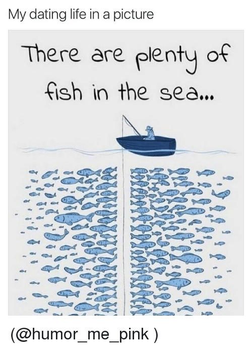 my dating life in a picture there are plenty of 3056393 🔥 25 best memes about fishing, dating, meme, and funny fishing