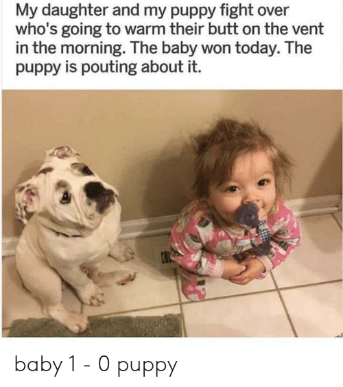 the baby: My daughter and my puppy fight over  who's going to warm their butt on the vent  in the morning. The baby won today. The  puppy is pouting about it.  O baby 1 - 0 puppy