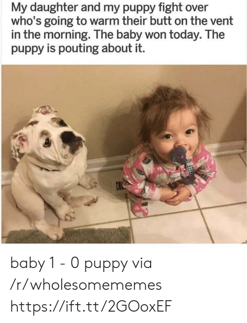 the baby: My daughter and my puppy fight over  who's going to warm their butt on the vent  in the morning. The baby won today. The  puppy is pouting about it. baby 1 - 0 puppy via /r/wholesomememes https://ift.tt/2GOoxEF
