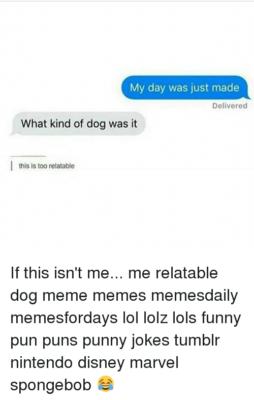 Punny Jokes Tumblr: My day was just made  Delivered  What kind of dog was it  I this is too relatable If this isn't me... me relatable dog meme memes memesdaily memesfordays lol lolz lols funny pun puns punny jokes tumblr nintendo disney marvel spongebob 😂