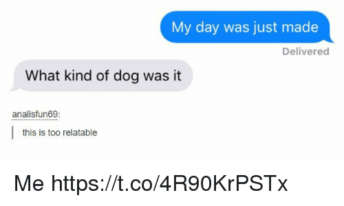 Relatable, Dog, and Day: My day was just made  Delivered  What kind of dog was it  analisfun69  this is too relatable Me https://t.co/4R90KrPSTx