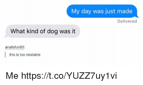 Relatable, Dog, and Day: My day was just made  Delivered  What kind of dog was it  analisfun69  this is too relatable Me https://t.co/YUZZ7uy1vi