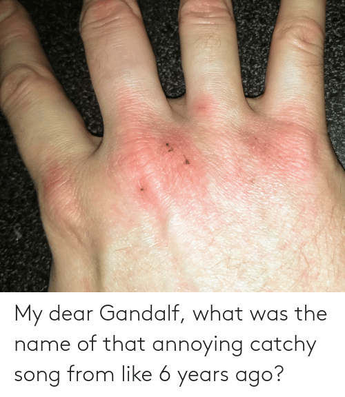 name of: My dear Gandalf, what was the name of that annoying catchy song from like 6 years ago?