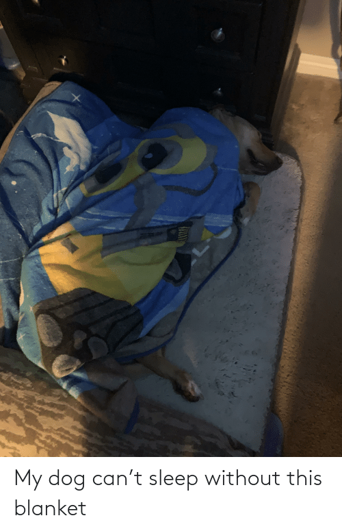 blanket: My dog can't sleep without this blanket