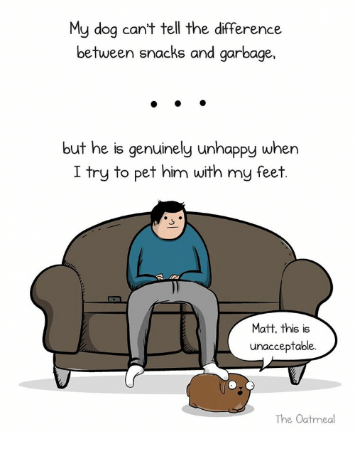 Unaccept: My dog can't tell the difference  between snacks and garbage,  but he is genuinely unhappy when  I try to pet him with my feet  Matt, this is  unacceptable.  The Oatmeal