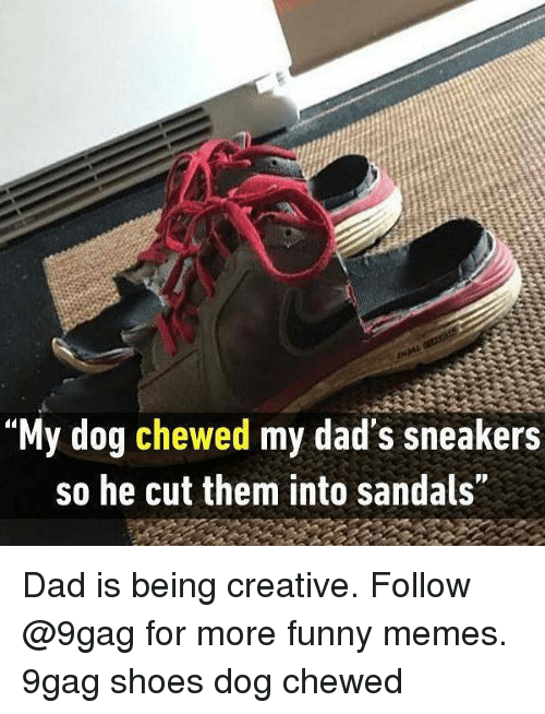 "9gag, Dad, and Funny: ""My dog chewed my dad's sneakers  so he cut them into sandalS Dad is being creative. Follow @9gag for more funny memes. 9gag shoes dog chewed"