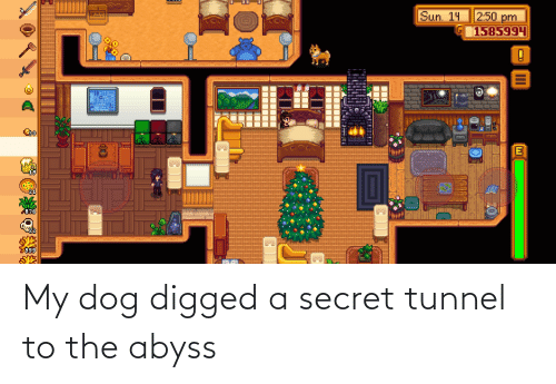 secret tunnel: My dog digged a secret tunnel to the abyss
