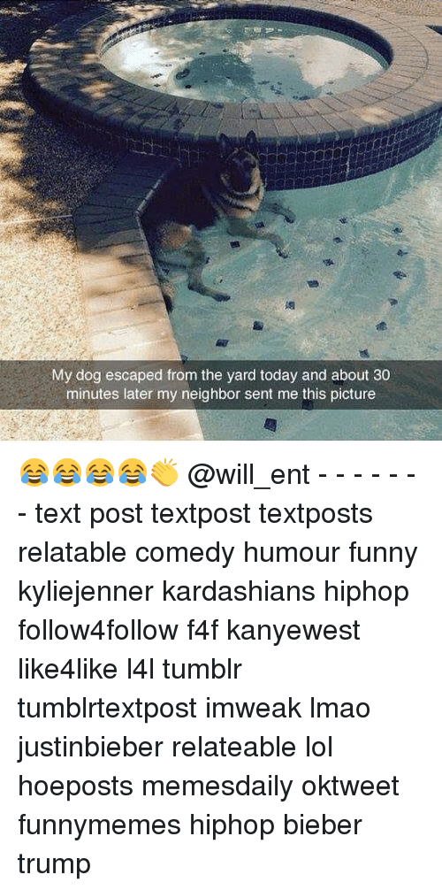 Memes, 🤖, and Dog: My dog escaped from the yard today and about 30  minutes later my neighbor sent me this picture 😂😂😂😂👏 @will_ent - - - - - - - text post textpost textposts relatable comedy humour funny kyliejenner kardashians hiphop follow4follow f4f kanyewest like4like l4l tumblr tumblrtextpost imweak lmao justinbieber relateable lol hoeposts memesdaily oktweet funnymemes hiphop bieber trump