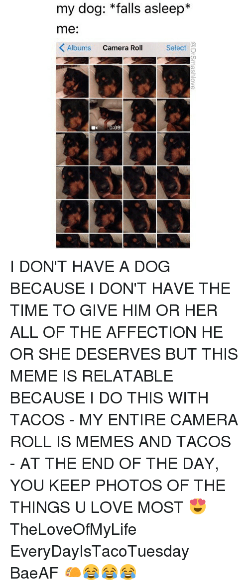 Love, Meme, and Memes: my dog: *falls asleep*  me:  Albums Camera Roll  Select  40:09 I DON'T HAVE A DOG BECAUSE I DON'T HAVE THE TIME TO GIVE HIM OR HER ALL OF THE AFFECTION HE OR SHE DESERVES BUT THIS MEME IS RELATABLE BECAUSE I DO THIS WITH TACOS - MY ENTIRE CAMERA ROLL IS MEMES AND TACOS - AT THE END OF THE DAY, YOU KEEP PHOTOS OF THE THINGS U LOVE MOST 😍 TheLoveOfMyLife EveryDayIsTacoTuesday BaeAF 🌮😂😂😂