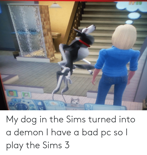 The Sims 3: My dog in the Sims turned into a demon I have a bad pc so I play the Sims 3