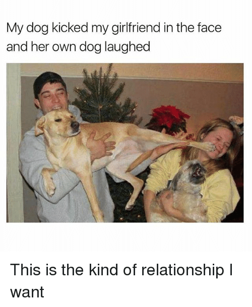 Funny, Girlfriend, and Her: My dog kicked my girlfriend in the face  and her own dog laughed This is the kind of relationship I want