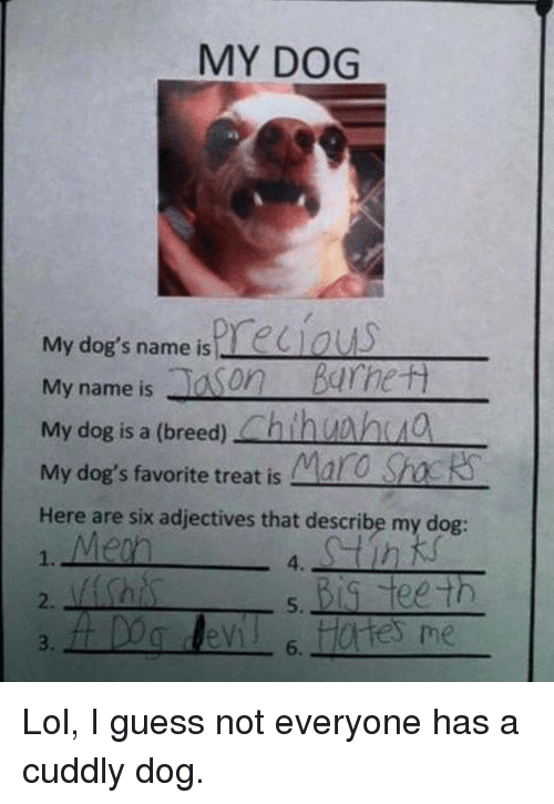 Dank, 🤖, and Teeth: MY DOG  My dog's name is  My name is  Ja on  Barrett  My dog is a (breed)  Chin  My dog's favorite treat is Maro  Sh  Here are six adjectives that describe my dog  Big teeth  6. Lol, I guess not everyone has a cuddly dog.