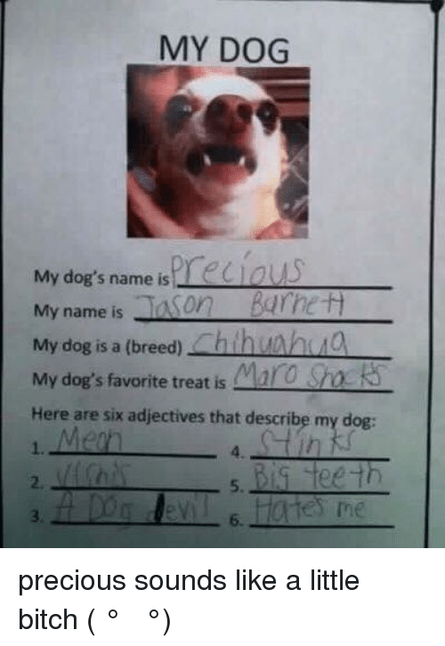 Bitch, Dank, and Dogs: MY DOG  My dog's name is  rec ous  My name is  Son  Barnett  My dog is a (breed)  ch hun huo  My dog's favorite treat is  Mara Sracks  Here are six adjectives that describe my dog:  Big teeth  me precious sounds like a little bitch   ( ͡° ͜ʖ ͡°)