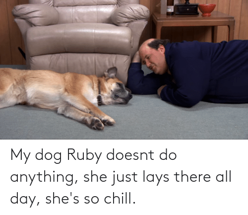 Lay's: My dog Ruby doesnt do anything, she just lays there all day, she's so chill.
