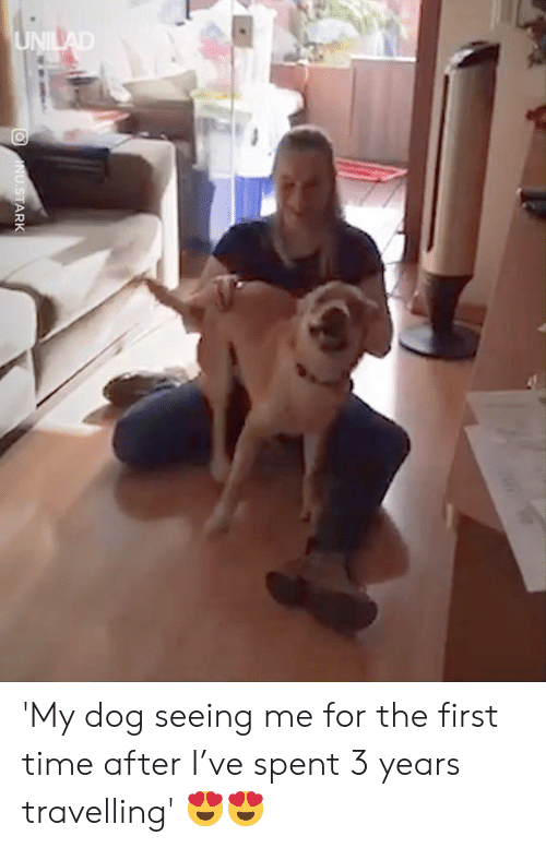 Travelling: 'My dog seeing me for the first time after I've spent 3 years travelling' 😍😍