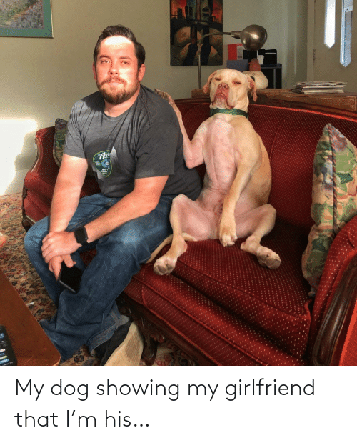 my girlfriend: My dog showing my girlfriend that I'm his…