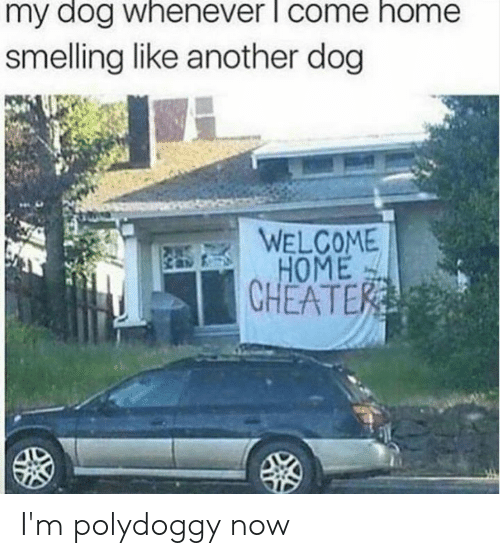smelling: my dog whenever l come home  smelling like another dog  WELCOME  HOME  CHEATER I'm polydoggy now