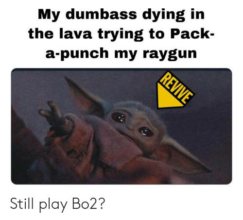 raygun: My dumbass dying in  a-punch my raygun  REVIVE  the lava trying to Pack- Still play Bo2?