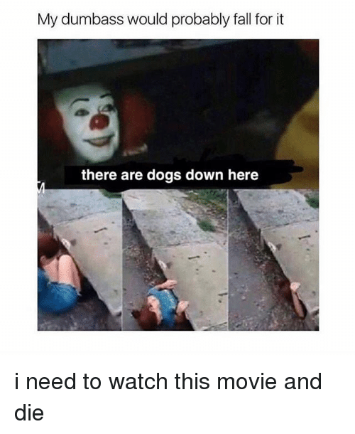 Dogs, Fall, and Movie: My dumbass would probably fall for it  there are dogs down here i need to watch this movie and die
