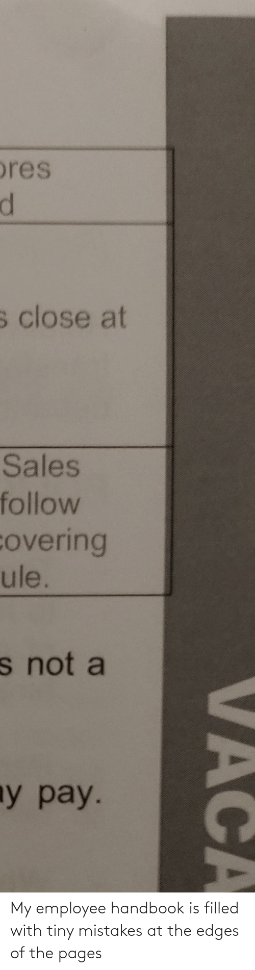 edges: My employee handbook is filled with tiny mistakes at the edges of the pages