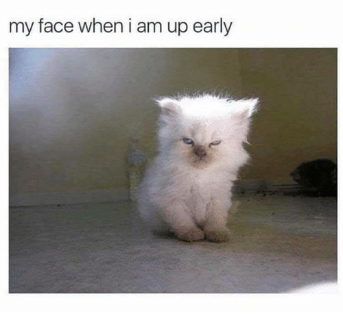 My Face When: my face when i am up early