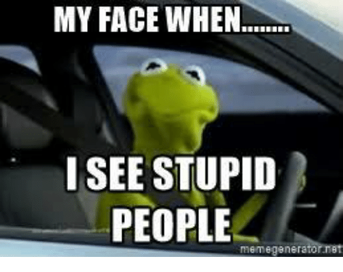 People Memes: MY FACE WHEN  I SEE STUPID  PEOPLE  meme genera