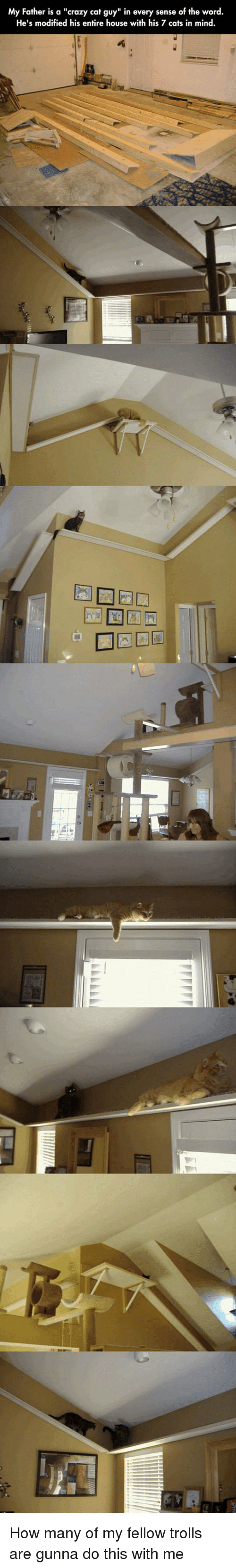 "trolls: My Father is a ""crazy cat guy"" in every sense of the word.  He's modified his entire house with his 7 cats in mind How many of my fellow trolls are gunna do this with me"
