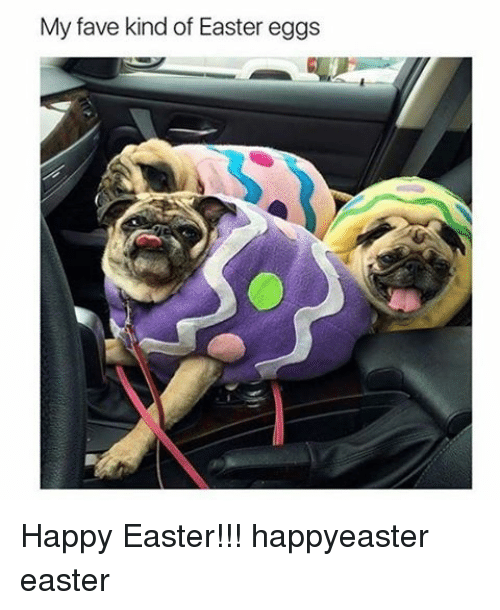Easter, Memes, and Fave: My fave kind of Easter eggs Happy Easter!!! happyeaster easter