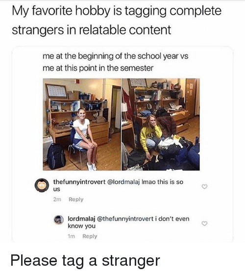 Memes, School, and Relatable: My favorite hobby is tagging complete  strangers in relatable content  me at the beginning of the school year vs  me at this point in the semester  thefunnyintrovert @lordmalaj Imao this is so  us  2m Reply  ③ lordmalaj @thefunnyintrovert i don't even  know you  1m Reply Please tag a stranger