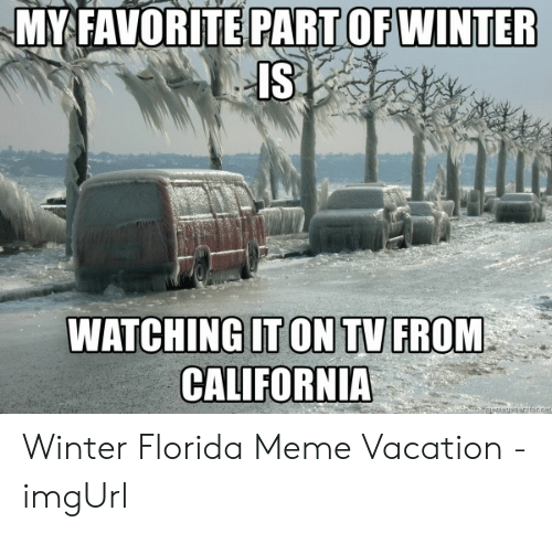 Florida Meme: MY FAVORITE PART OF WINTER  IS.  WATCHING[T ONTU  CALIFORNIA  FROM Winter Florida Meme Vacation - imgUrl