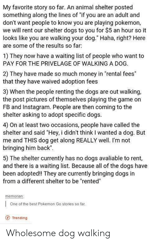 "game on: My favorite story so far. An animal shelter posted  something along the lines of ""if you are an adult and  don't want people to know you are playing pokemon,  we will rent our shelter dogs to you for $5 an hour so it  looks like you are walking your dog."" Haha, right? Here  are some of the results so far  1) They now have a waiting list of people who want to  PAY FOR THE PRIVELAGE OF WALKING A DOG.  2) They have made so much money in ""rental fees""  that they have waived adoption fees  3) When the people renting the dogs are out walking,  the post pictures of themselves playing the game on  FB and Instagram. People are then coming to the  shelter asking to adopt specific dogs  4) On at least two occasions, people have called the  shelter and said ""Hey, i didn't think I wanted a dog. But  me and THIS dog get along REALLY well. I'm not  bringing him back""  5) The shelter currently has no dogs avaliable to rent,  and there is a waiting list. Because all of the dogs have  been adopted! They are currently bringing dogs in  from a different shelter to be ""rented""  memonan  One of the best Pokemon Go stories so far  O Trending Wholesome dog walking"