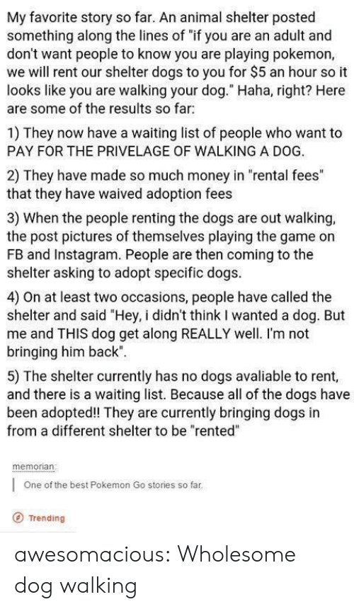 "game on: My favorite story so far. An animal shelter posted  something along the lines of ""if you are an adult and  don't want people to know you are playing pokemon,  we will rent our shelter dogs to you for $5 an hour so it  looks like you are walking your dog."" Haha, right? Here  are some of the results so far  1) They now have a waiting list of people who want to  PAY FOR THE PRIVELAGE OF WALKING A DOG.  2) They have made so much money in ""rental fees""  that they have waived adoption fees  3) When the people renting the dogs are out walking,  the post pictures of themselves playing the game on  FB and Instagram. People are then coming to the  shelter asking to adopt specific dogs  4) On at least two occasions, people have called the  shelter and said ""Hey, i didn't think I wanted a dog. But  me and THIS dog get along REALLY well. I'm not  bringing him back""  5) The shelter currently has no dogs avaliable to rent,  and there is a waiting list. Because all of the dogs have  been adopted! They are currently bringing dogs in  from a different shelter to be ""rented""  memonan  One of the best Pokemon Go stories so far  O Trending awesomacious:  Wholesome dog walking"