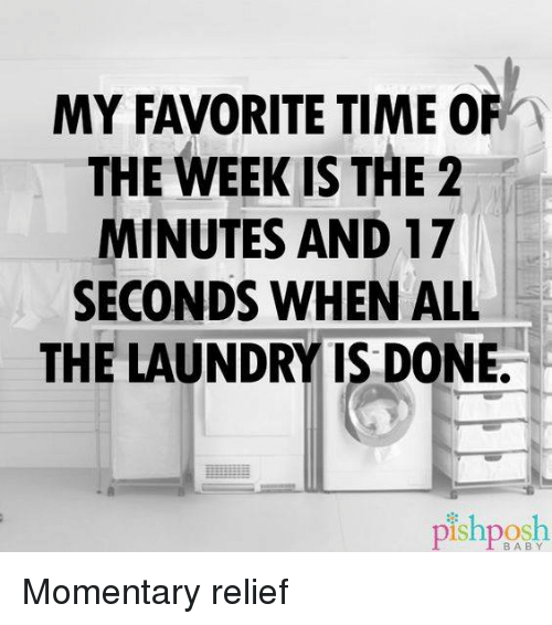 Dank, Laundry, and 🤖: MY FAVORITE TIME OF  THE WEEK IS THE 2  MINUTES AND 17  SECONDS WHEN ALL  THE LAUNDRY IS DONE.  pish BABY Momentary relief