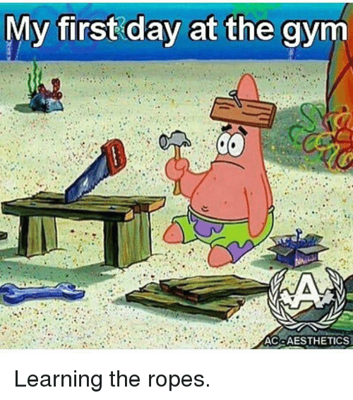 first day in the gym First day in the gym - funny gif check out for more funny pictures, funny animals, funny gifs, and many funny stuffs stay tuned with downloadfeastcom.