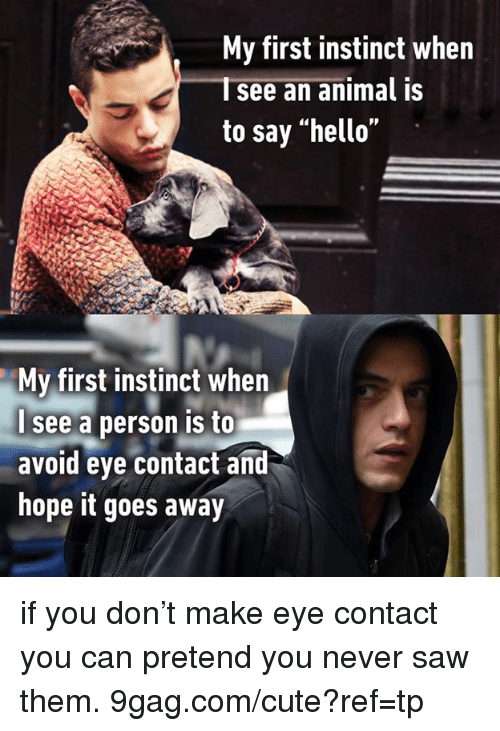 """9gag, Cute, and Dank: My first instinct when  Isee an animal is  to say """"hello""""  My first instinct when  see a person is to  avoid eye contact and  hope it goes away if you don't make eye contact you can pretend you never saw them. 9gag.com/cute?ref=tp"""