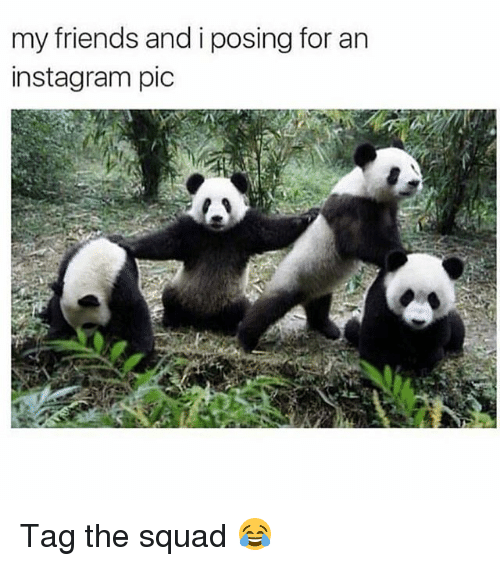 Friends, Instagram, and Memes: my friends and i posing for an  instagram pic Tag the squad 😂