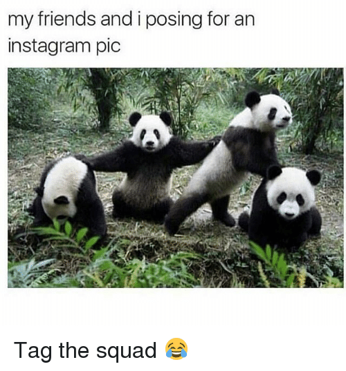 Friends, Funny, and Instagram: my friends and i posing for an  instagram pic Tag the squad 😂