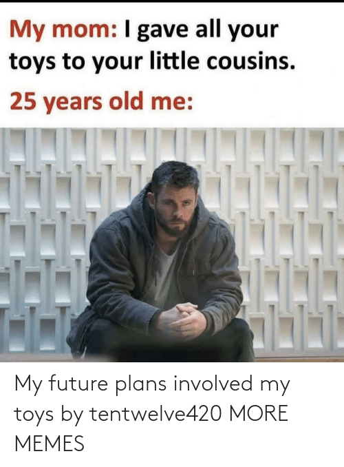 Plans: My future plans involved my toys by tentwelve420 MORE MEMES