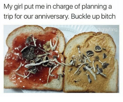 Buckle, Dank Memes, and My Girl: My girl put me in charge of planning a  trip for our anniversary. Buckle up bitch  drgrayfang