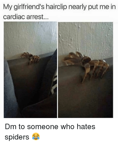 Cardiac: My girlfriend's hairclip nearly put me in  cardiac arrest... Dm to someone who hates spiders 😂