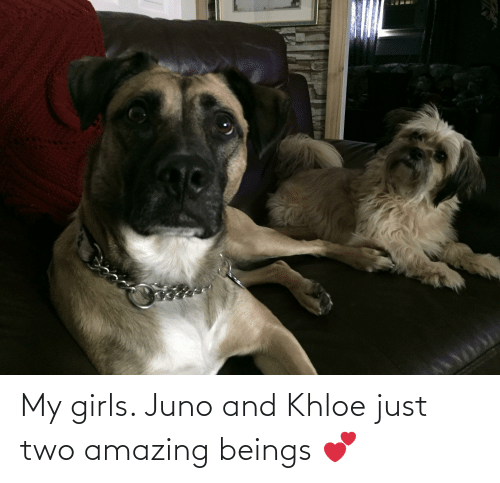 khloe: My girls. Juno and Khloe just two amazing beings 💕