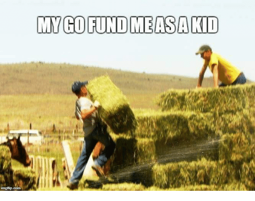 Farming: MY GO FUND MEASAKID
