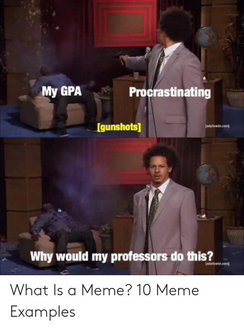 Meme Examples: My GPAProcrastinating  Igunshots  adualtswm.con  Why would my professors do this? What Is a Meme? 10 Meme Examples