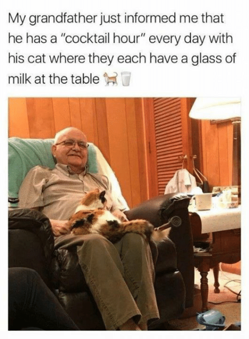 """cocktail: My grandfather just informed me that  he has a """"cocktail hour"""" every day with  his cat where they each have a glass of  milk at the table"""