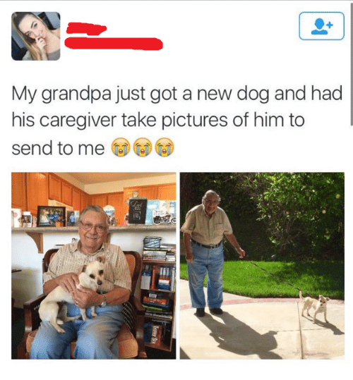 Grandpa, Pictures, and Got: My grandpa just got a new dog and had  his caregiver take pictures of him to  send to me