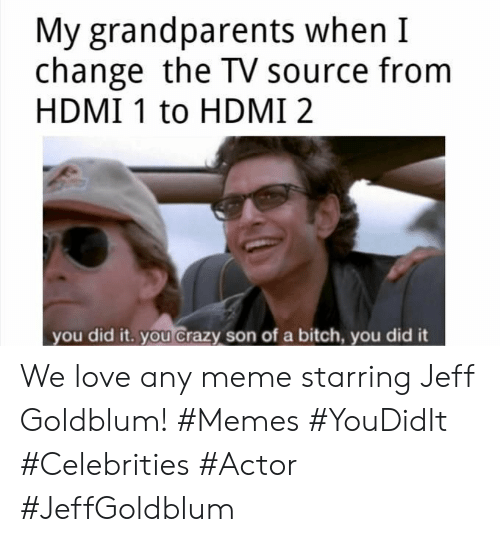 hdmi: My grandparents when I  change the TV source from  HDMI 1 to HDMI 2  you did it. you crazy son of a bitch, you did it We love any meme starring Jeff Goldblum! #Memes #YouDidIt #Celebrities #Actor #JeffGoldblum