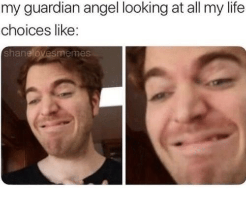 guardian angel: my guardian angel looking at all my life  choices like:  shanelovesmemes