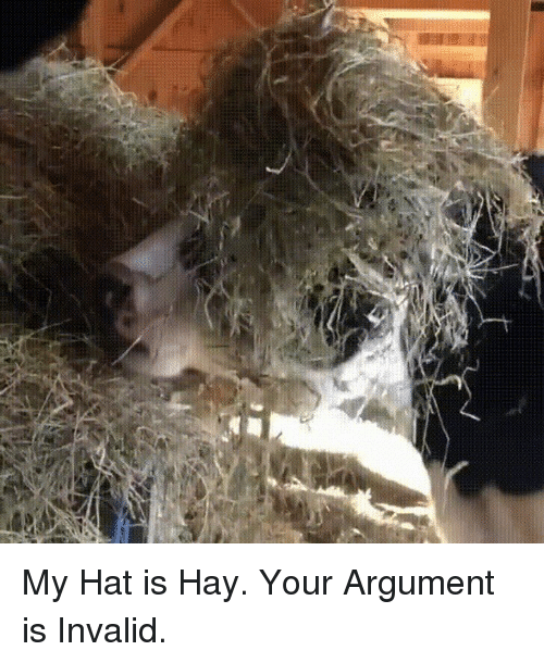 Argument Is Invalid: My Hat is Hay. Your Argument is Invalid.
